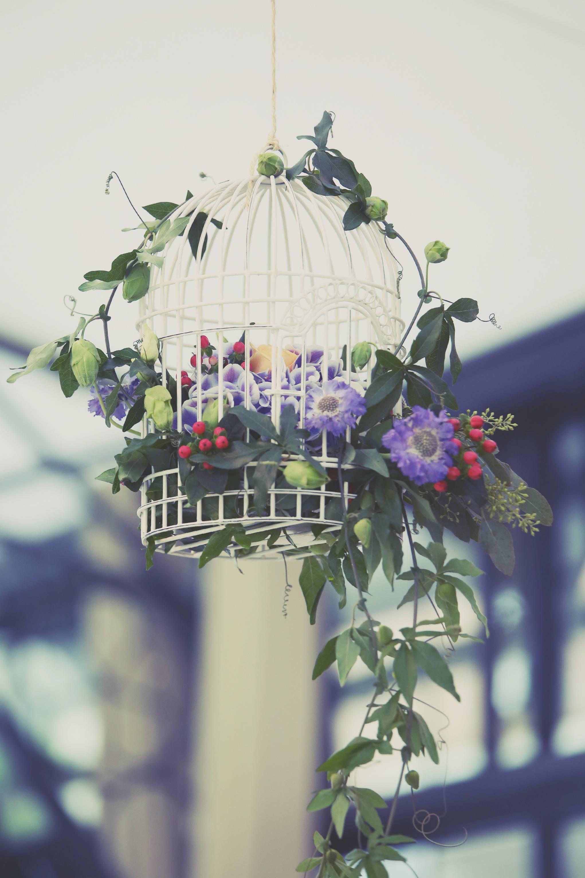 fleurs j et o
