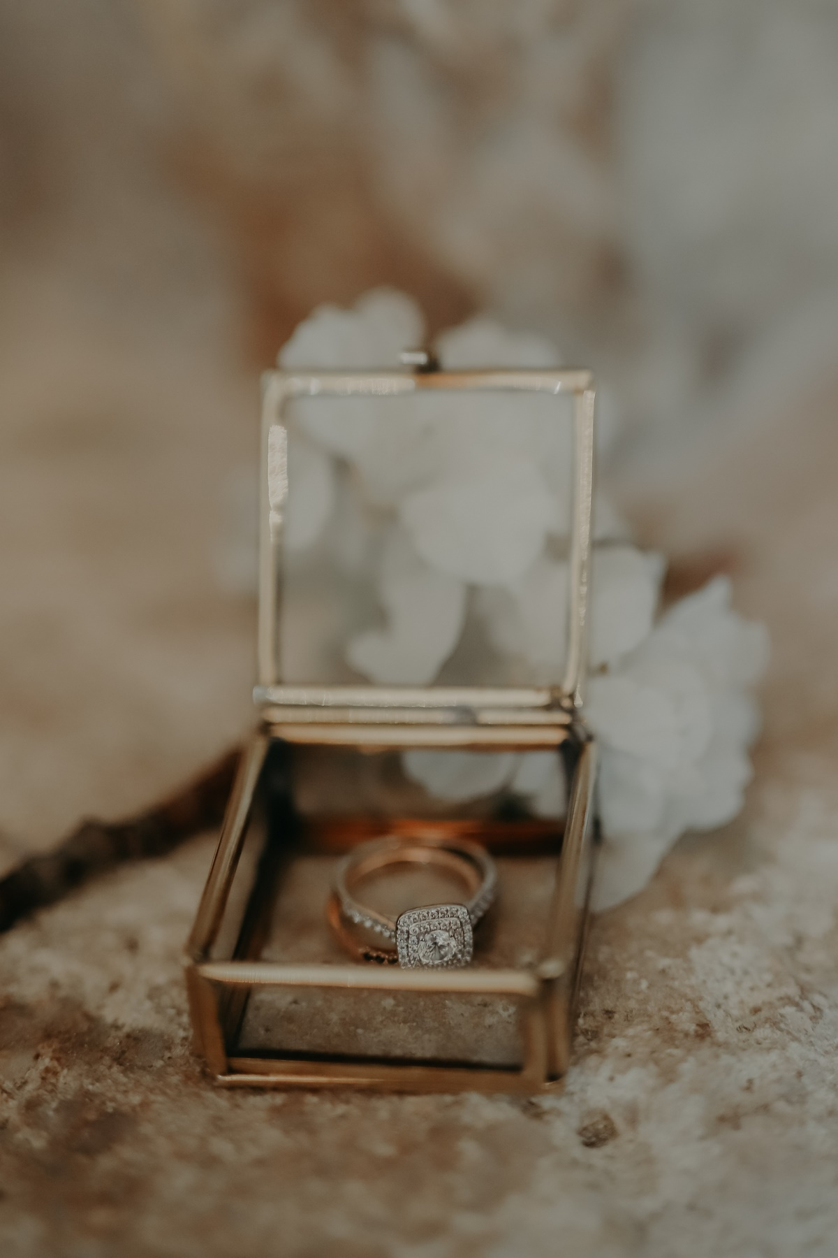 Cigales et Petits Fours - wedding planner provence